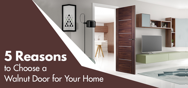 5 Reasons to Choose a Walnut Door for Your Home